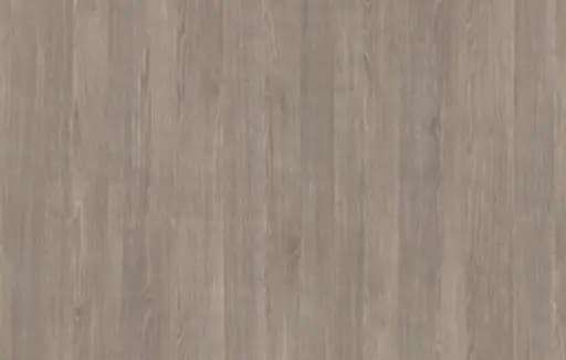 Misty Oak / Roble Joplin